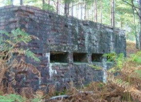The last Pill Box in the Rother Valley?
