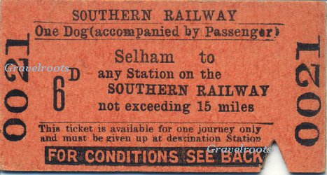 Ticket for dog from Selham station